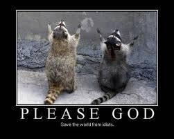 mapaches rezando
